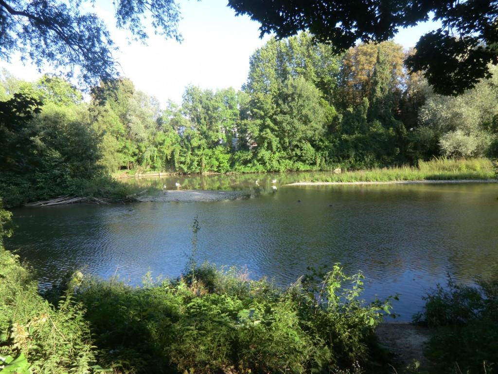 les-berges-de-l-ill-mulhouse-14254672350